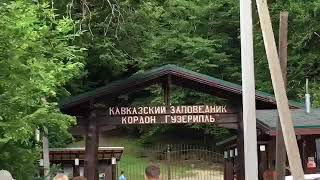 Кавказский заповедник 03.06.2018г.