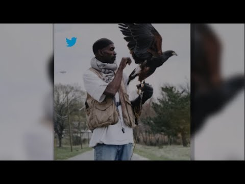 Man And Birds Send Powerful Message