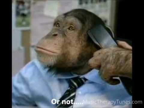 Monkey Song for music  speech therapy, kids with autism and special needs The new Matilda
