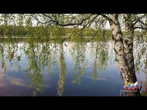 С.Есенин - Зелёная прическа
