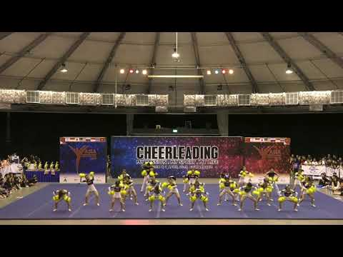 186  Team Cheer Exhibition Freestyle Pom #1 Chengdu Tanghu Foreign Language School