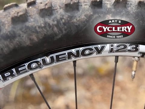Review: WTB Frequency TCS i23 Rims and WTB Stryker AM TCS Race Wheels