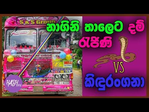 Nagini Air Horn With Dam Rajina & Kidurangana