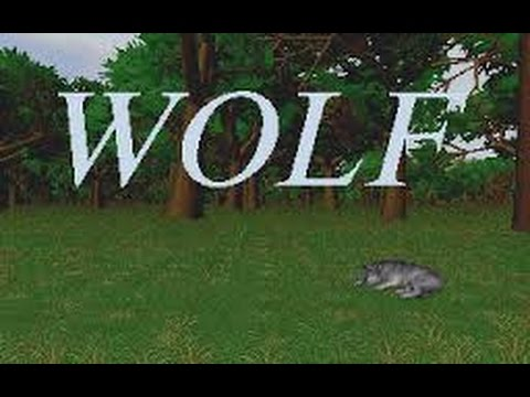 How to install And get Wolf (the game) working