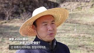 [에코맘 산골이유식] 유정란 농사소개