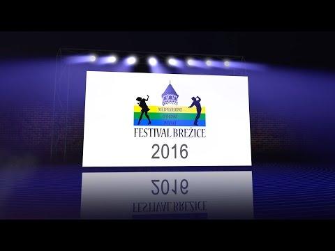 Mednarodni otroški pevski festival Brežice 2016