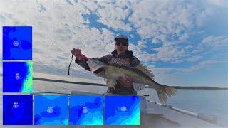 Ловля судака с картой глубин и без эхолота на большом водохранилище Рыбалка на Минском море в июне