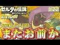 【NS】大妖精の泉再び!ゼルダの伝説 ブレスオブザワイルド 実況プレイ!#22【ニンテンドースイッチ】