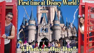 First time at Disney World! Epcot, Magic Kingdom and Animal Kingdom (Disney for one day)