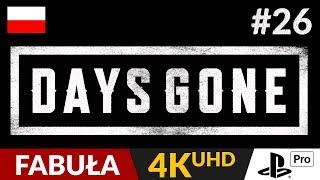 Days Gone PL  #26 (odc.26)  Wyprawa po laski | Gameplay po polsku 4K