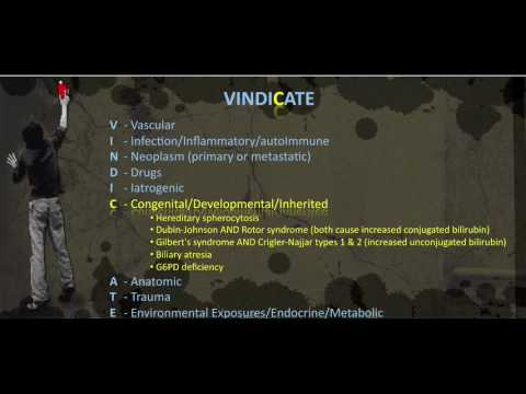 Jaundice VINDICATE MNEMONIC - YouTube