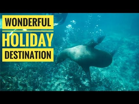 WOW!! Look Galapagos Land Based Adventure Holiday l Destination Holiday