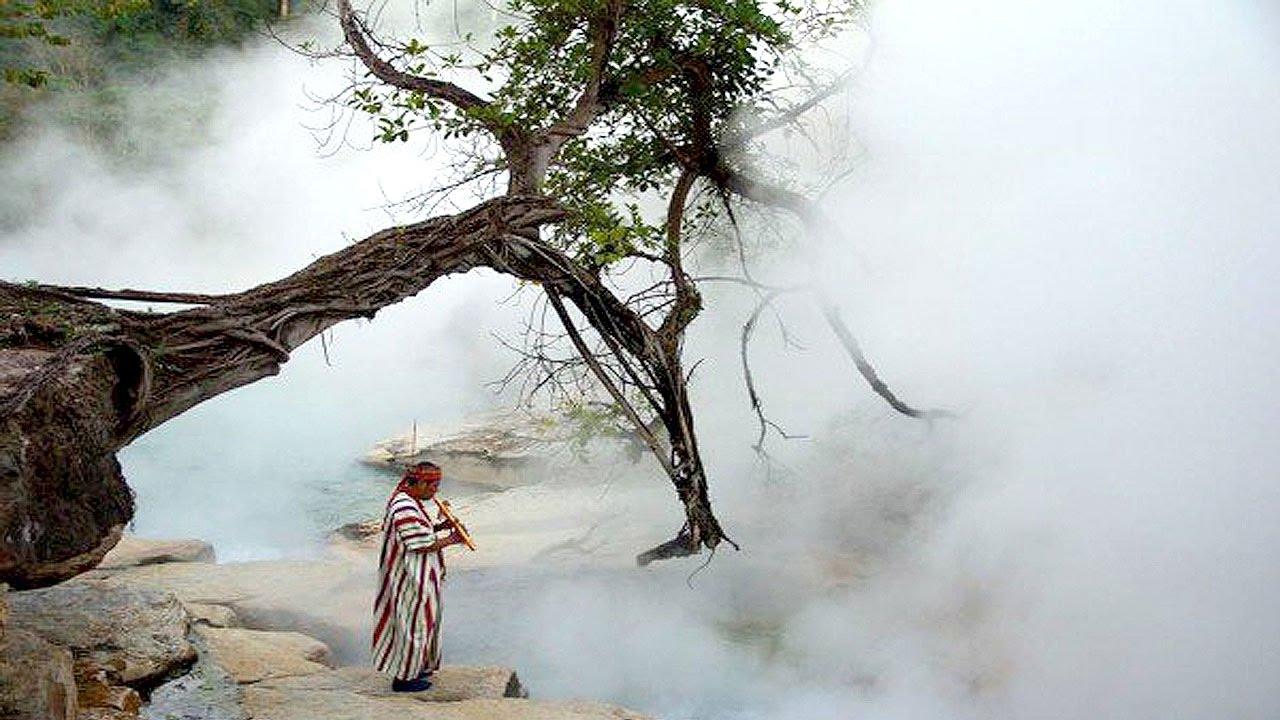 সবচেয়ে ভয়ংকর ৫টি জঙ্গলের ব্যাখ্যাতীত রহস্য !! 5 Unexplained Mysteries Of Jungle