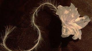 Пушистая травка для цветочных композиций(Видео о рукоделии: мастер класс. Пушистая травка для цветочных композиций. Лучше всего делать на летонах,..., 2014-03-28T02:43:32.000Z)