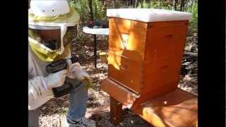 Backyard Beekeeping Part 20(S2:E6): Winter Preparations