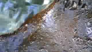 acqua sulfurea