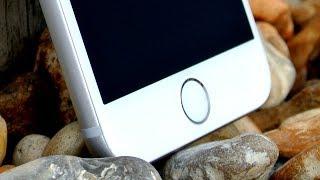iPhone 6S Plus Now...