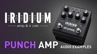 Strymon Iridium – Punch Amplifier Examples – Demo