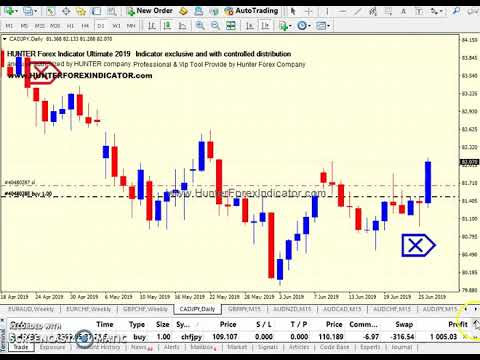 Forex daily return indicato