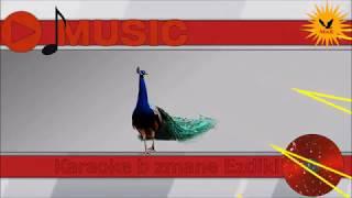 Karaoke b zmane Ezdiki - Shamame