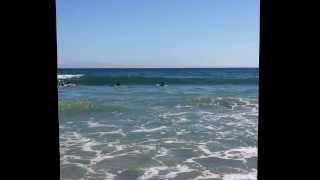 夏休みは終わったがサーフィン三昧の九月。 勝浦の祭りの合間にも海に行...