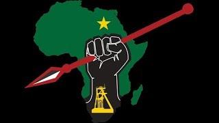 Julien Malema & The EFF'S Plans for Nation Building