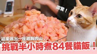 好味小姐挑戰-半小時煮完一週貓飯-貓主食-好味貓鮮食廚房ep175