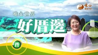 土城安心道場茶道班(一)【好厝邊15】| WXTV唯心電視台