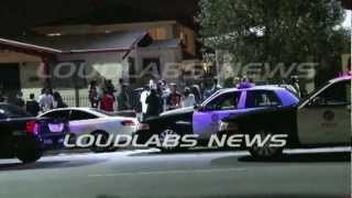 LAPD Fight Call / South Los Angeles