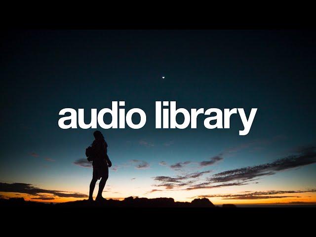 Summer Nights - LiQWYD [Vlog No Copyright Music]