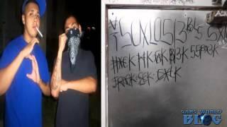 South Los 13 SXL13 Gang History  (Los Angeles, Ca)