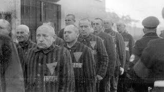 «Борьба за память»: почему в России нет Национального дня памяти жертв Холокоста?