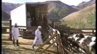 McCLOUD - The Colorado Cattle Caper (1974) [1/8]