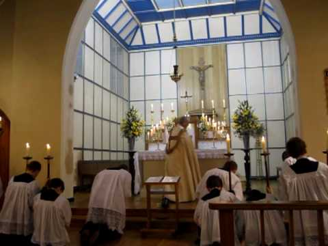 Latin in the Liturgy