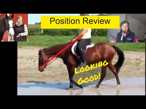 Equitation Position Review - How to sit on a horse correctly