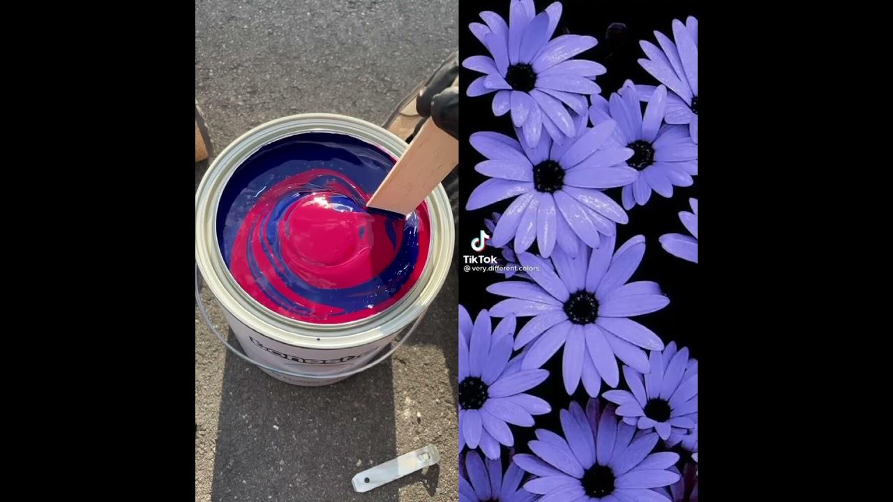 Color Matching Tiktok Aesthetics: Periwinkle #shorts