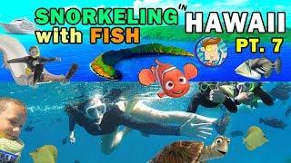 SNORKELING IN HAWAII w  Ocean Water Slide! Swim w  Fish @ Molokini (FUNnel V Fam Maui Trip Part 7)