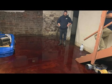 Katie Sommers - WTF: Iowa Family's Basement Fills With Blood