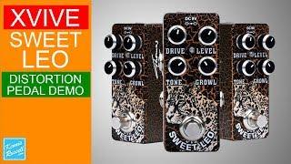 Xvive Sweet Leo O2 Lead Distortion Pedal Demo