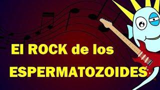 El Rock de los Espermatozoides y el Óvulo  - Julinky