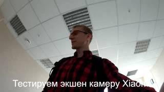 10 000 000 рублей на продаже тюльпанов оптом на 8 марта.