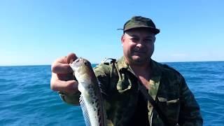 ЧУДОВА МОРСЬКА РИБАЛКА / обкатка SEA-PRO 5 л/с / WONDERFUL SEA FISHING