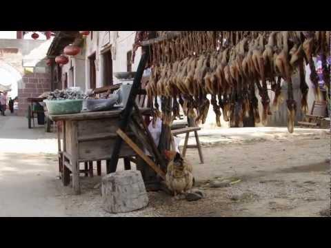 Shaoguan 韶關 - Chu-chi guxiang 珠璣古巷之入場 day 14 - 4 ( China )