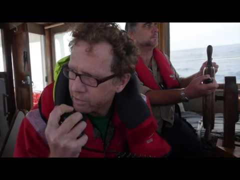 Greenpeace NZ boat Taitu intercepts seismic oil ship Amazon Warrior (PMC)