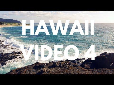 Day4 Sealife Park - Oahu Island of Hawaii