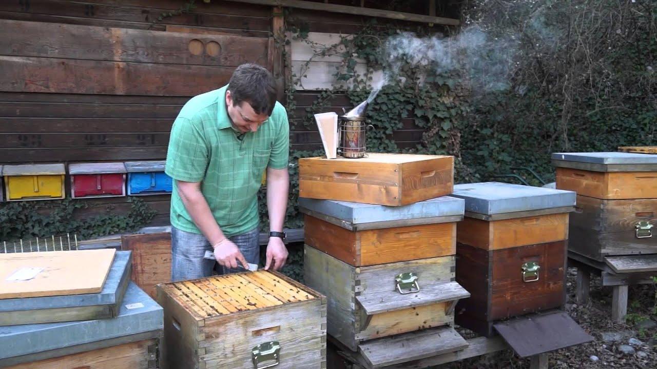 2 teil bioimkerei im jahresverlauf aufsetzen der honigr ume april2014 youtube. Black Bedroom Furniture Sets. Home Design Ideas