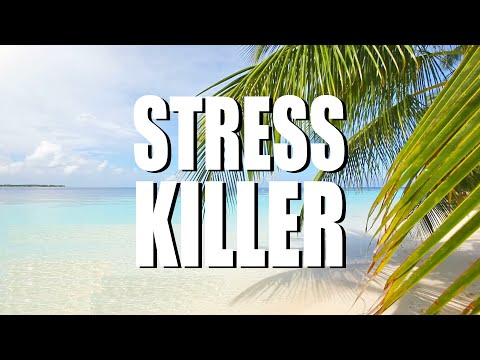 STRESS KILLER. 13 amazing tips to manage stress (2021, SOULutions 5)