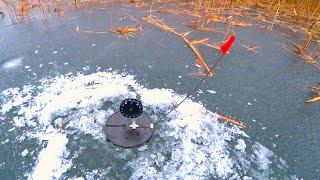 Щука клюёт хотя не первый лёд а скорее последний Рыбалка на жерлицы декабрь 2019 Ловля щуки