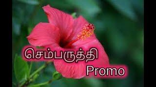 Sembaruthi Serial Promo 29\03\2018 | Zee Tamil