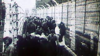 """В штаб-квартире ООН в Нью-Йорке открылась выставка к 75-летию освобождения лагеря смерти """"Освенцим""""."""